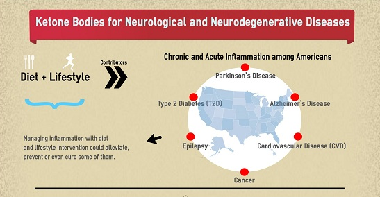neurodegenerative diseases essay