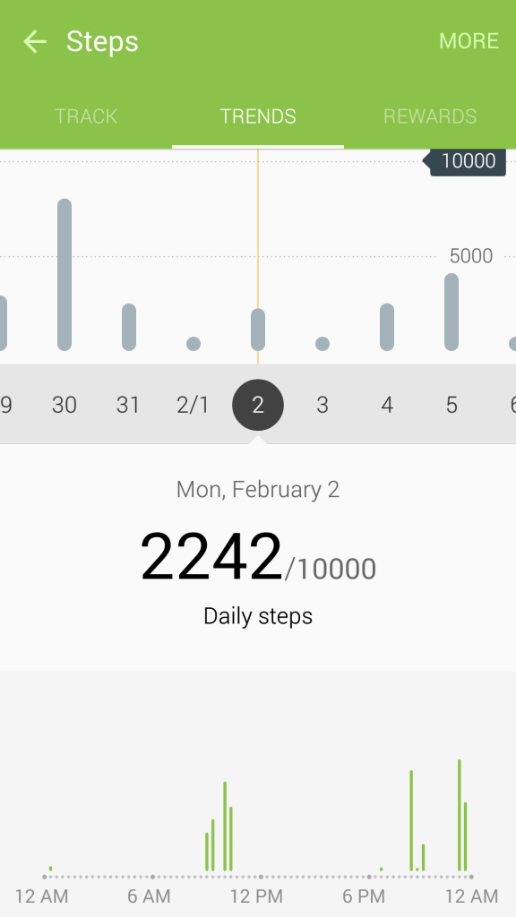 May 2015 Pedometer Logs - Struggling with Maintaining Weight - Feb 2 - 3
