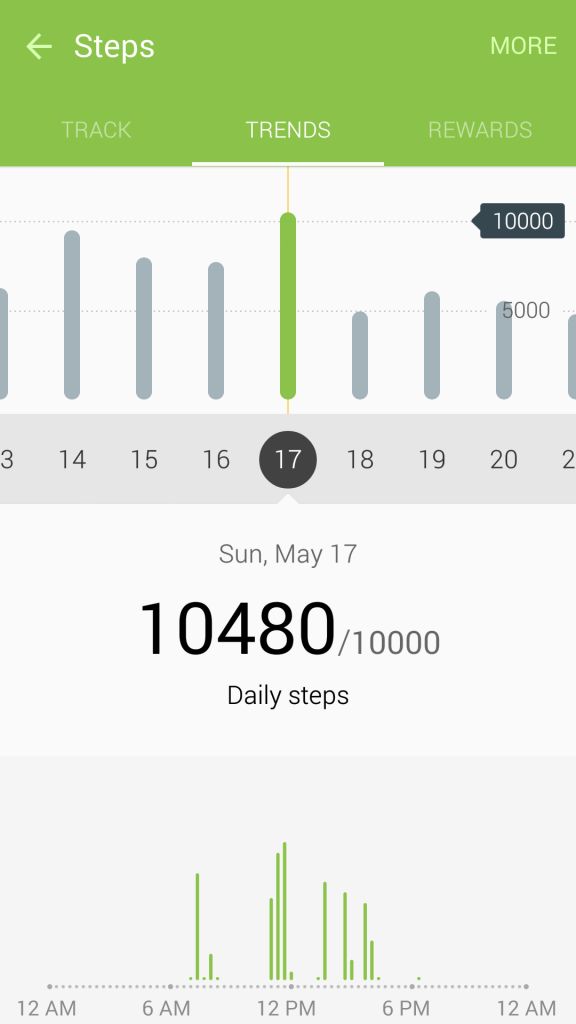 May 2015 Pedometer Logs - Struggling with Maintaining Weight - May 17 - 2