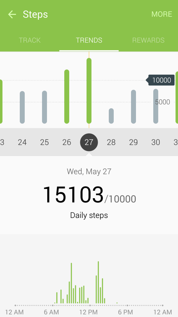 May 2015 Pedometer Logs - Struggling with Maintaining Weight - May 27 - 1