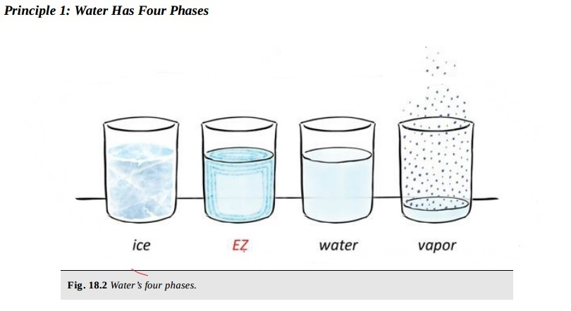 Water Chemistry, 4th Phase, Gerald Pollack and EZ - Ignored Discoveries - 1