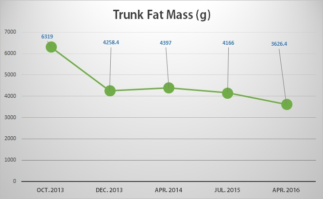 My Belly Fat Progression by DXA - [2013 - 2016]  - TFM
