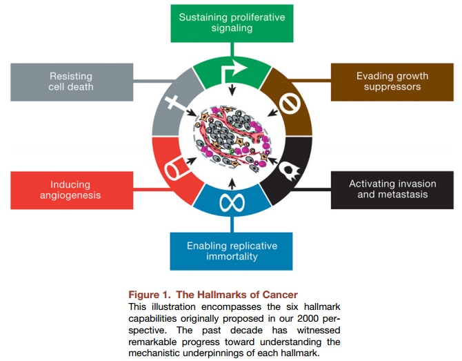 The Hallmarks of Cancer - Insights from Decades of Research - 1