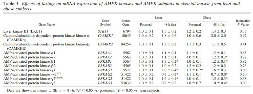 Fasting and AMPk Signaling - Lean vs. Obese - 3