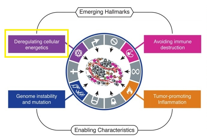 the-hallmarks-of-cancers-1-deregulating-cellular-energetics